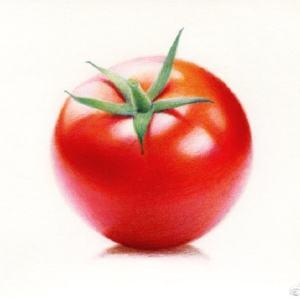 彩铅西红柿全过程